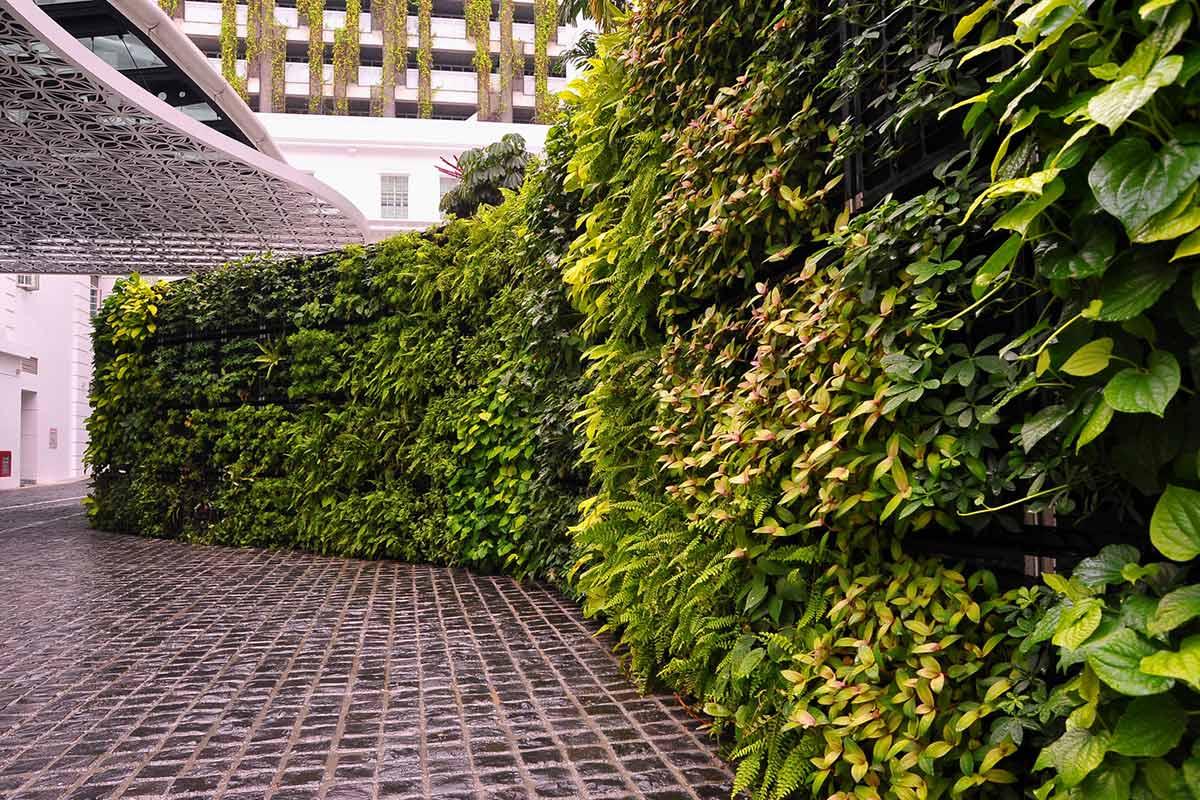 دیوار سبز , طراحی دیوار سبز , قیمت دیوار سبز