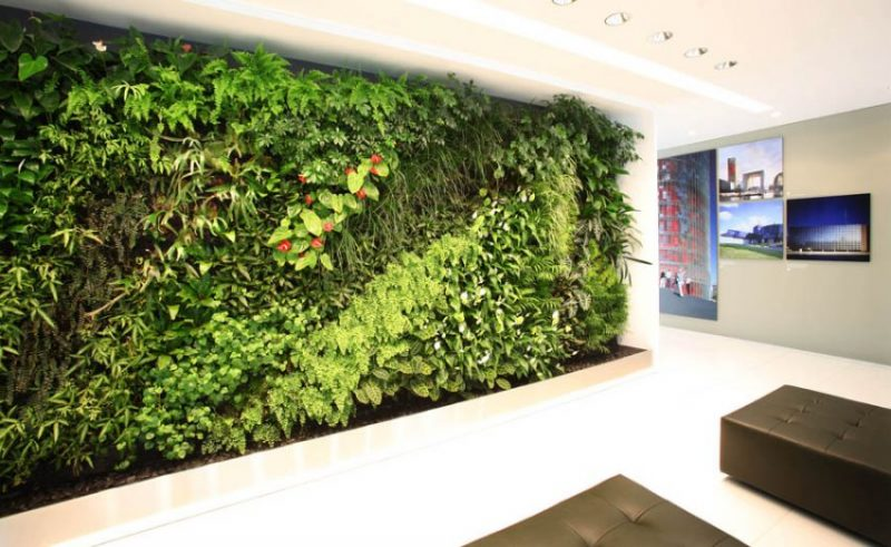 دیوار سبز , طراحی دیوار سبز , اجرا دیوار سبز